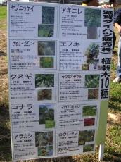 今回植えたのはこの10種類の苗木です。