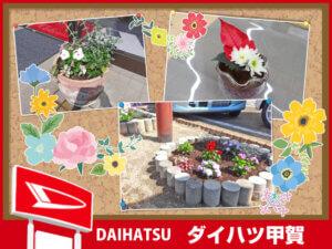 ダイハツ甲賀 花壇